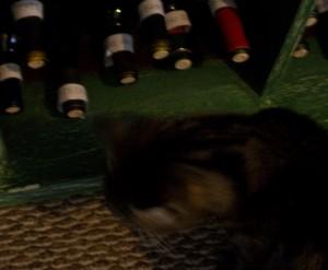 homemade wine and cat