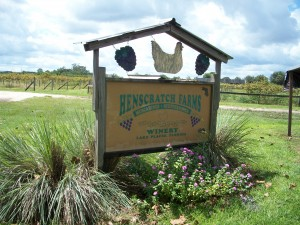 Henscratch Farms Winery Florida Wine Train Near St. Petersburg
