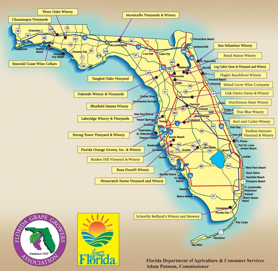 Florida Orange Grove Map | Florida Map